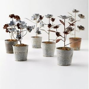 Anthropologie Other - Aged iron potted daisies Nwt